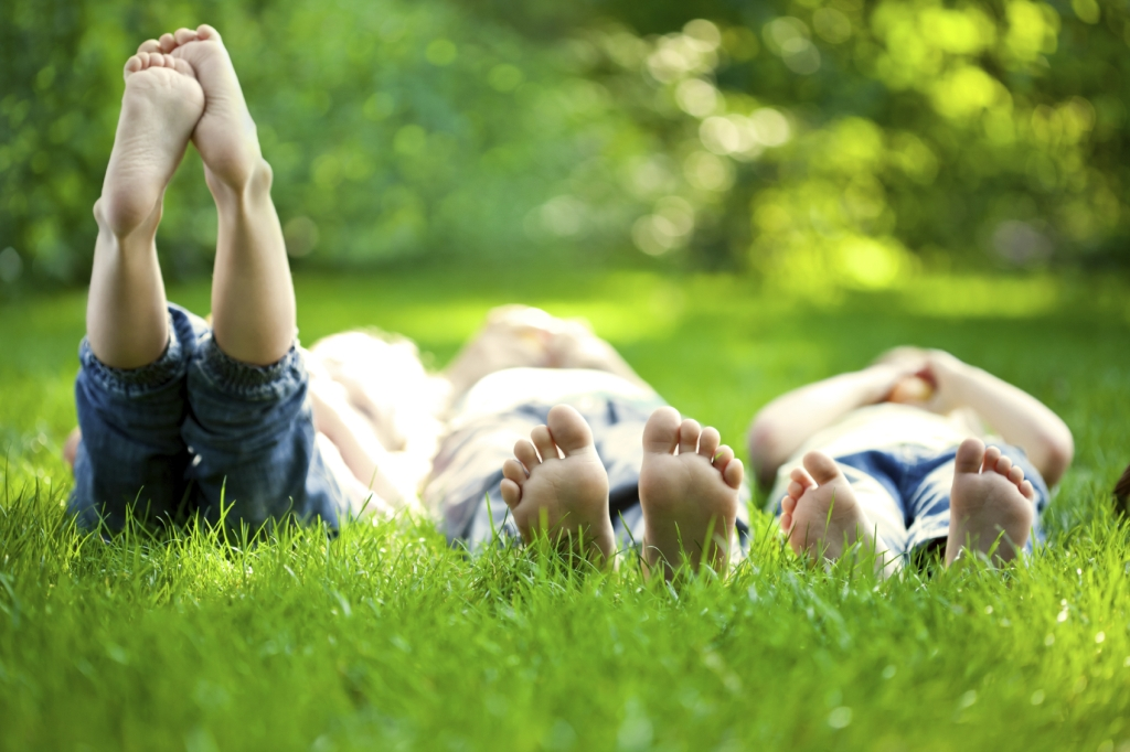 iStock 000019391555 friends in grass