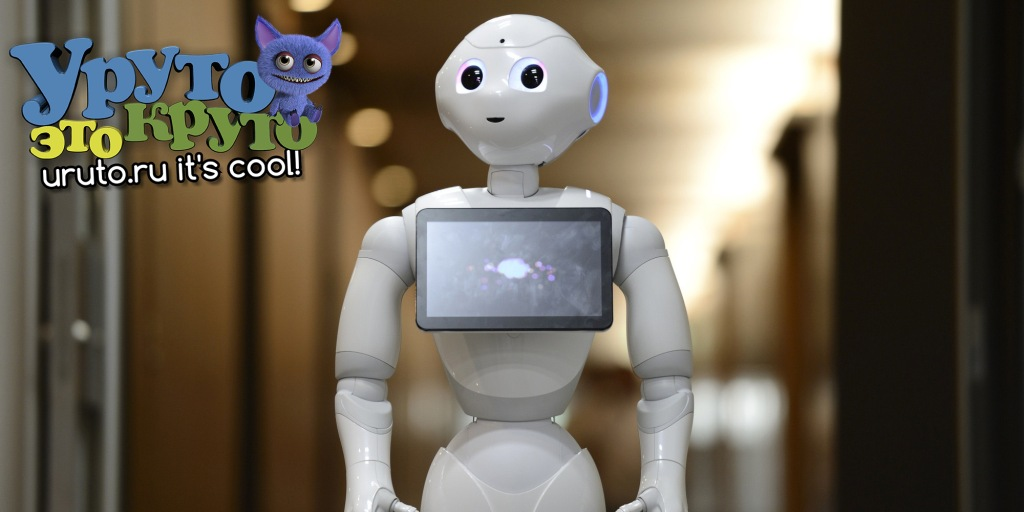 o PEPPER ROBOT facebook