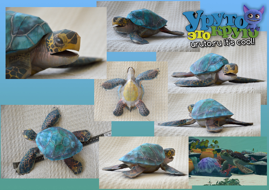 zoo tycoon paper collection green sea turtle by drwheeliemobile db1egvh